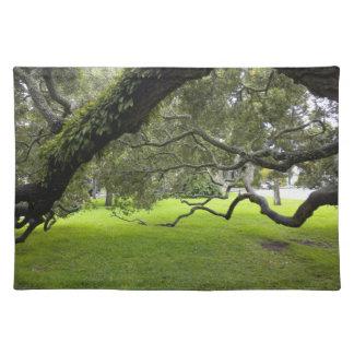 Den Mossy oaken på Neptune parkerar Bordstablett
