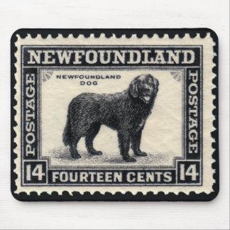 Den Newfoundland hunden stämplar gåvor Musmatta
