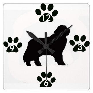 Den Newfoundland hunden tar tid på Fyrkantig Klocka