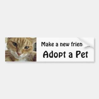 Den orange tabby katt adopterar ett husdjur bildekal