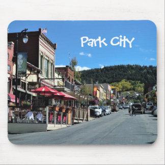 Den Park City Utah musen vadderar Musmatta