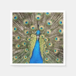 Den Pedro påfågeln befjädrar den färgrika Pappersservett
