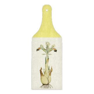 Den persiska irisen paddlar skärbrädan