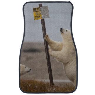 Den polara björnen lutar undertecknar på för bilmatta