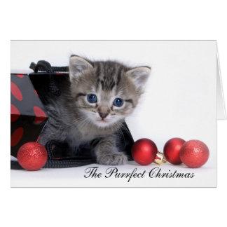 Den Purrfect julkortet Hälsningskort