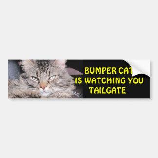Den rikliga katten håller ögonen på BAKLUCKA 12 Bildekal