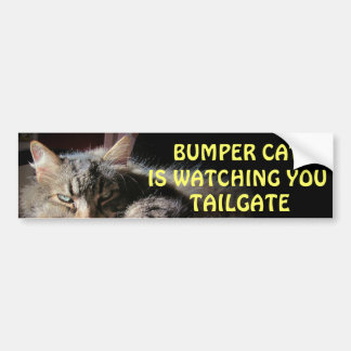 Den rikliga katten håller ögonen på BAKLUCKA 15 Bildekal