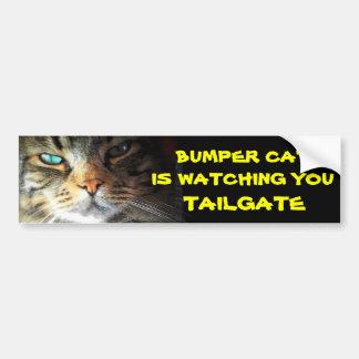 Den rikliga katten håller ögonen på BAKLUCKA 21 Bildekal