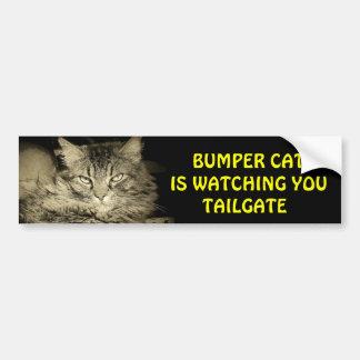 Den rikliga katten håller ögonen på BAKLUCKA 24 Bildekal
