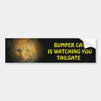 Den rikliga katten håller ögonen på BAKLUCKA 25 Bildekal