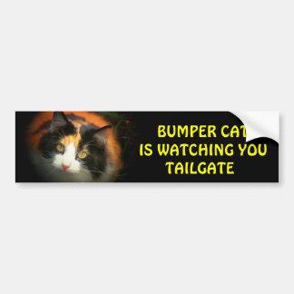 Den rikliga katten håller ögonen på BAKLUCKA 26 Bildekal