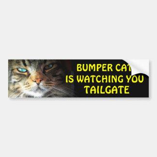 Den rikliga katten håller ögonen på BAKLUCKA 2,5 Bildekal