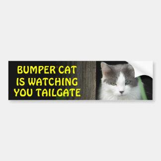 Den rikliga katten håller ögonen på dig BAKLUCKA 4 Bildekal