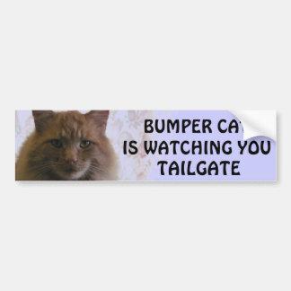 Den rikliga katten håller ögonen på dig BAKLUCKA Bildekal
