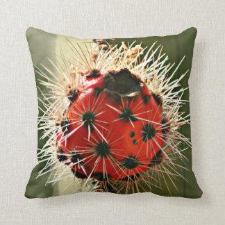 Den röda ugnen leda i rör kaktuskuladekorativ kudde