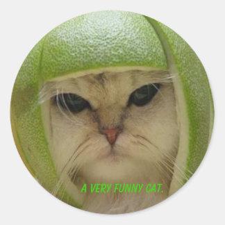 Den roliga kattetiketten runda klistermärken