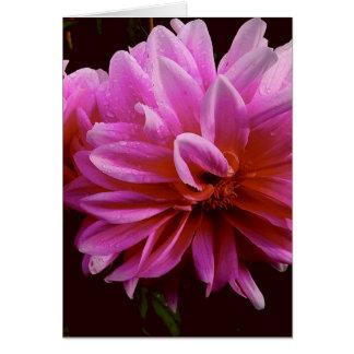 Den rosa blommigten noterar kortet OBS kort