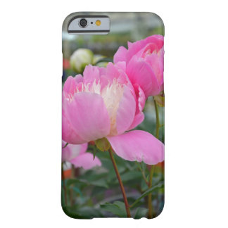 Den rosa pionen blommar iphone case barely there iPhone 6 fodral