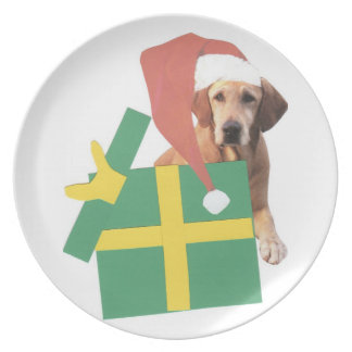 Den Santa för jul för gult för den Labrador Tallrik
