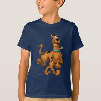 Den Scooby Doo airbrushen poserar 3 Tee Shirts