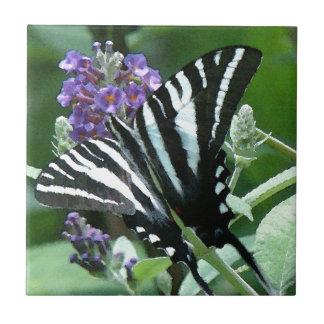 Den sebraSwallowtail fjärilen blommar blommigt Liten Kakelplatta