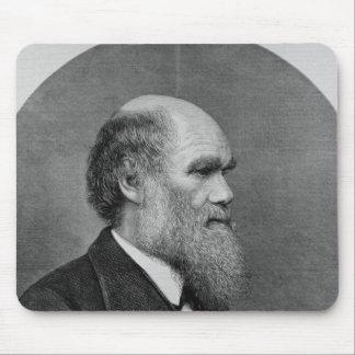 Den sena Herr C.R. Darwin, FRS, LLD Musmatta