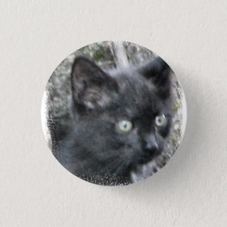 Den små vilda kattungen knäppas mini knapp rund 3.2 cm