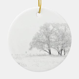 Den snöig vintern landskap fotografi julgransprydnad keramik