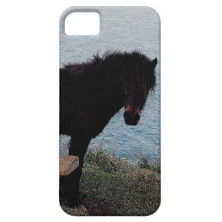 Den södra Devon kustenDartmoor ponnyn nära tar av iPhone 5 Skal