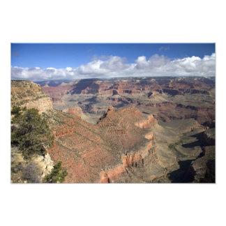 Den södra kanten beskådar av grandet Canyon, Arizo Fototryck