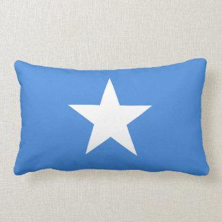 Den Somalian flagga kudder Prydnadskudde