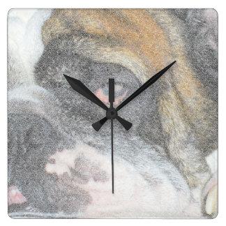 Den sömniga engelska bulldoggväggen tar tid på fyrkantig klocka