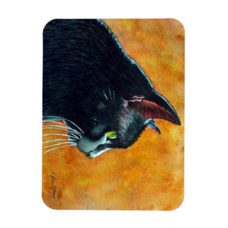 Den svart katten profilerar in magnet