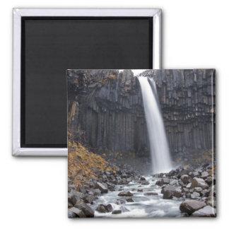 Den Svartifoss vattenfallet i island kvadrerar Magnet