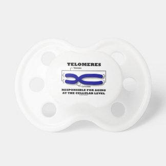 Den Telomeres ansvariga för att åldras på cell- Napp