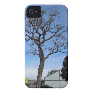 Den Templeton oaken står hög över huvudsaklig St iPhone 4 Case-Mate Case