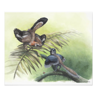Den tidigaste fågeln fototryck