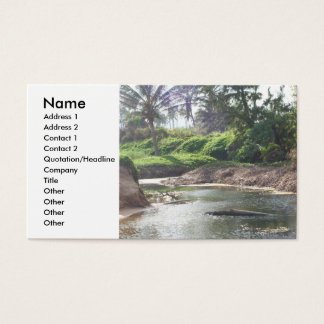 Den tidvattens- bassängen profilerar kortet visitkort