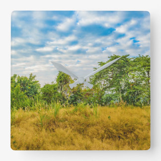 Den tropiska ängen landskap platsen, Guayaquil Fyrkantig Klocka