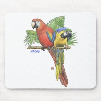 Den tropiska Macawsmusen vadderar Musmatta