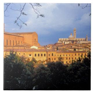 Den Tuscan byn av Sienna, Italy. Kakelplatta