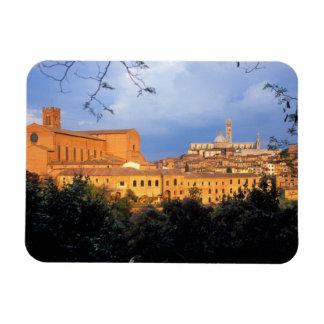 Den Tuscan byn av Sienna, Italy. Magnet