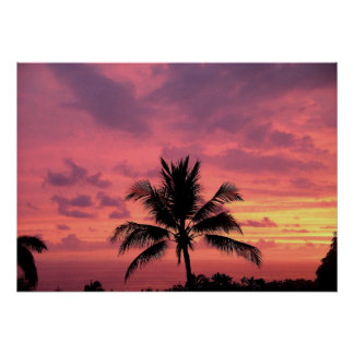 Den ursnygga hawaianska solnedgången poster