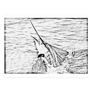 den väldiga sailfishen vykort