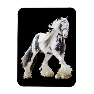 Den zigenska Marehingsten formulerar hästen Magnet