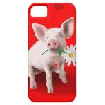 Denna gris förälskat fodral för iPhone 5 iPhone 5 Case-Mate Cases