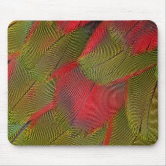 Design för Macawbröstfjäder Musmatta
