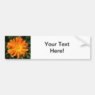 Designanpassade för orange daisy bildekal
