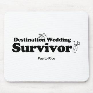 destination-wedding-survivor_mug_shots mus matta