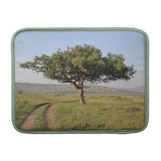 Det afrikanska träd landskap iPad & den Macbook MacBook Air Sleeve